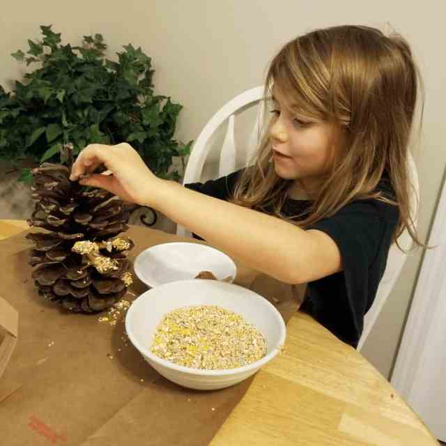 young-blonde-girl-decorating-pine-cones-for-the-holidays