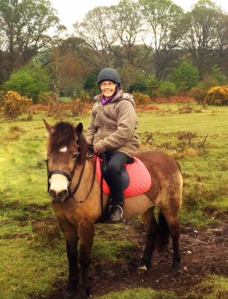 Winter horse riding in the New Forest