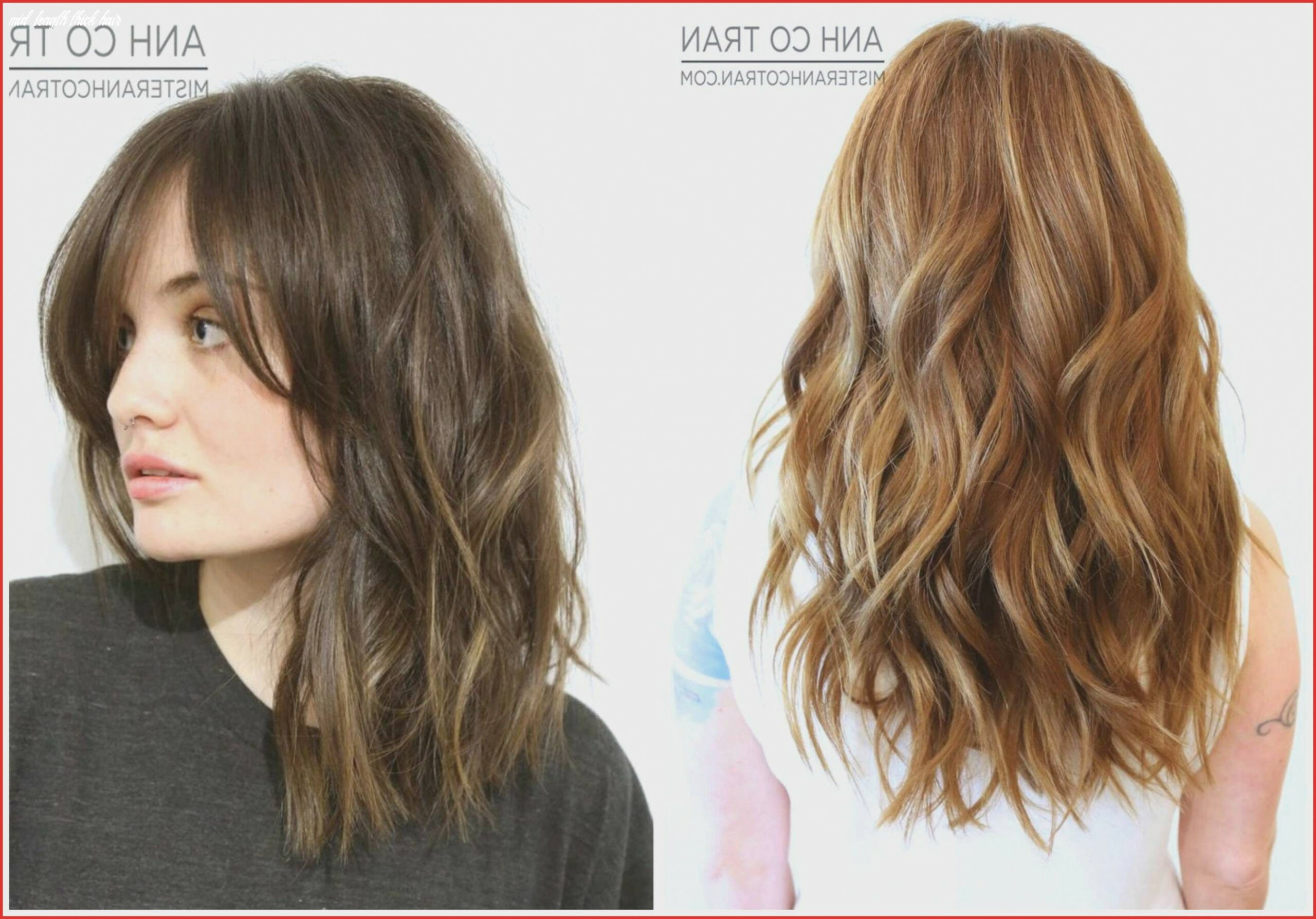 Medium Length Hairstyles for Thick Coarse Hair New 12 Mid Length ...