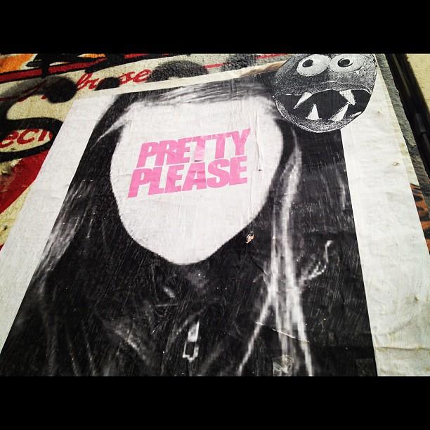 """Pretty Please"": Your picture here..."
