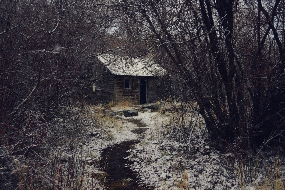 Martin_cold_houses