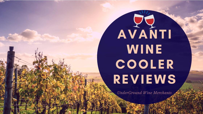 Avanti Wine Cooler Reviews