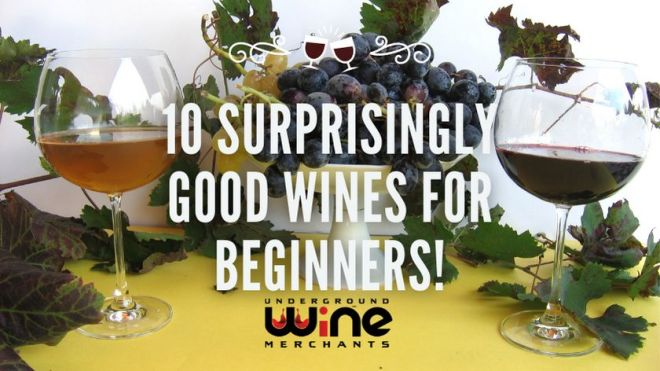 10 SURPRISINGLY GOOD Wines for Beginners!