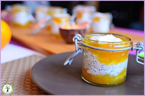 Pudding aux graines de chia et noix de coco, coulis passion. Sans lactose, sans gluten.