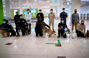 Watch: UAE police dogs detect Covid-19 at Dubai airport