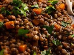 Lentil Ragout – French Puy lentil side dish