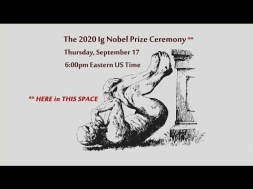 Ig Nobel Prize winners include scientists who cleared blocked noses with sex