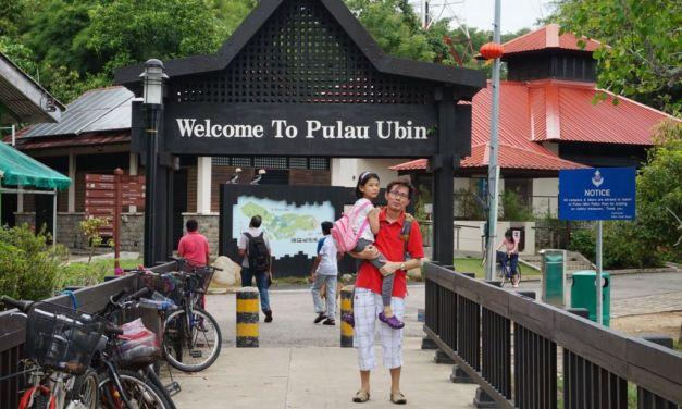 Pesta Ubin