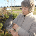 Lesley with pigeon