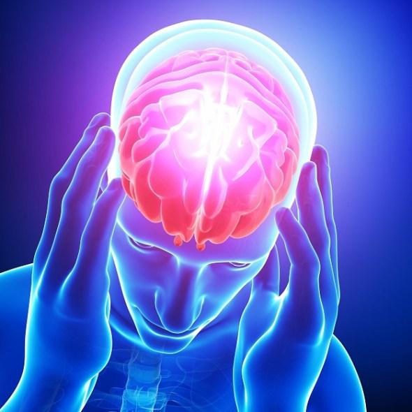 Brain in Use