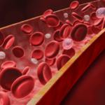 Blood in Artery