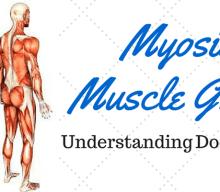 Myositis Muscle Groups: Understanding doctor-speak