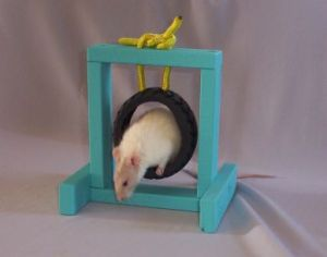 cleaning pet rat toys