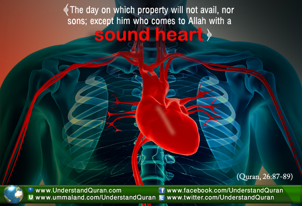 heart Why is the Heart So Important in Islam?