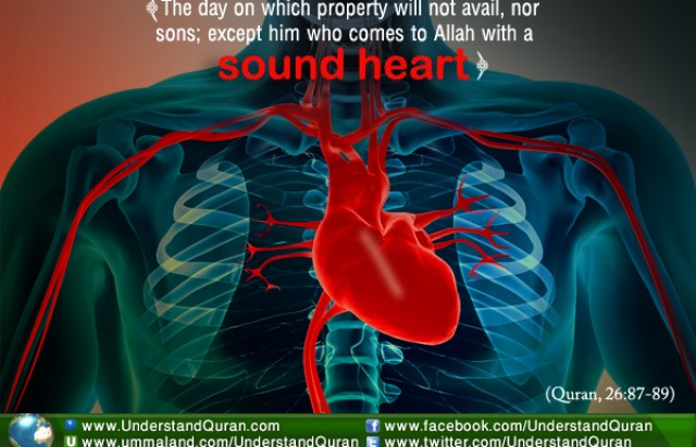 Why is the Heart So Important in Islam? | Understand Al-Qur'an Academy