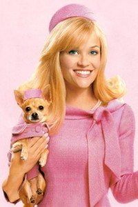 Gender Issue in Legally Blonde