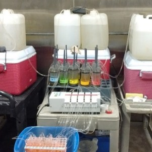 The core incubation experimental setup at UNC Institute of Marine Sciences