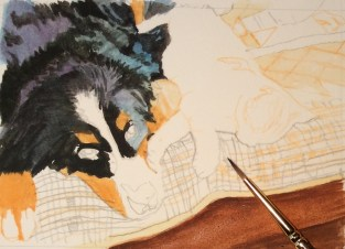 how-to-get-a-dog-painting-cat-painting-commission-by-rachelle-siegrist