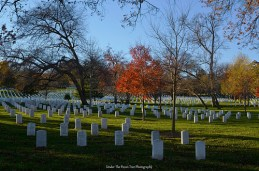 The Arlington National Cemetery