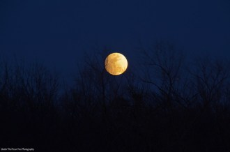 The Moon minutes before its maximum penumbral eclipse