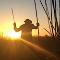 The 'silent massacre' killing El Salvador's sugarcane workers