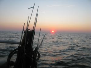 Harpuner - Harpun til undervandsjagt