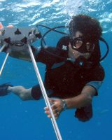Elkhorn_Coral Disease Survey James_W_Porter Portrait 8