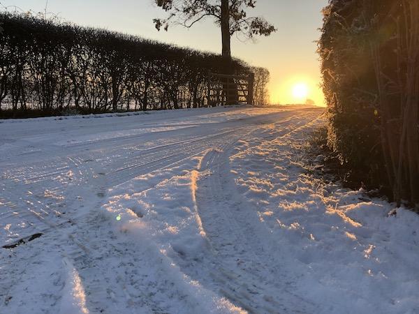Snow sunrise