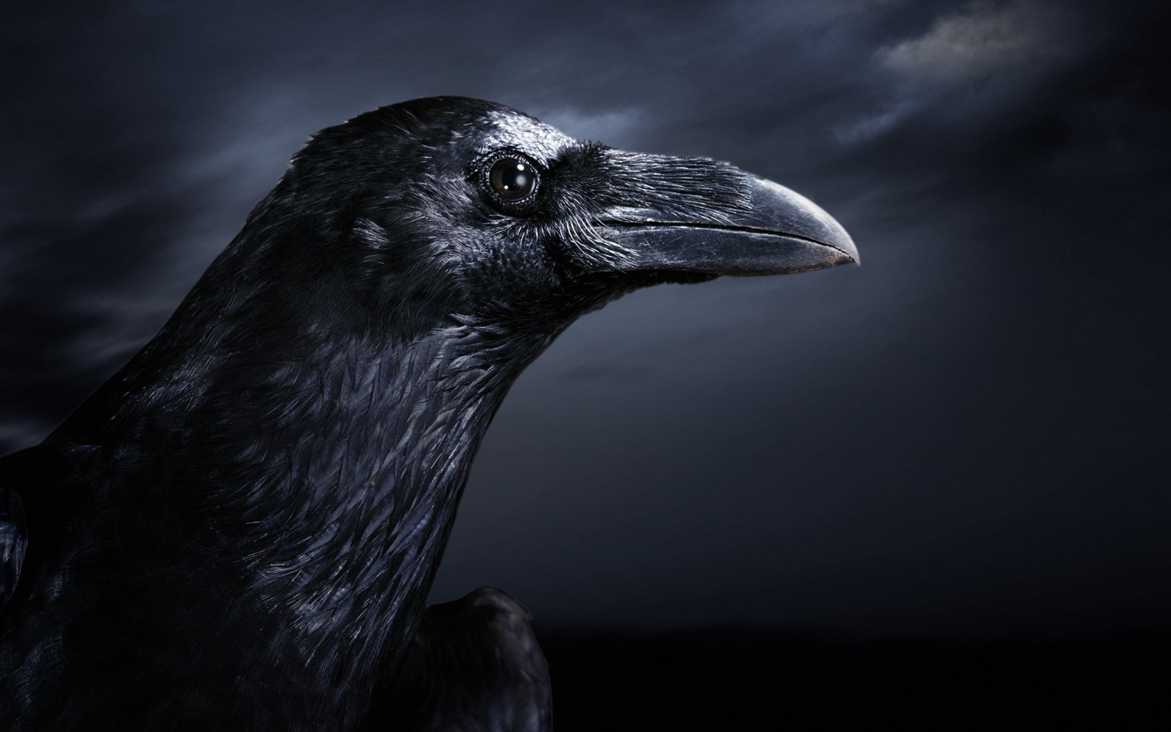 The Raven • Underworldtalescom