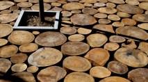 Carmen Moreno Álvarez. Reciclaje de eucaliptus para piso en el Museo del Agua,