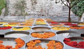 """Lola Domènech, instalación en el patio del Museo de Arte de Girona para """"Temps de Flors"""", Girona, 2003"""