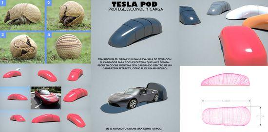 Cristina Guadalupe Galván, Tesla Pod. Proyecto presentado a Elon Musk. NY 2010
