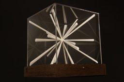 Romina Canna. d-Lab. Ie Award