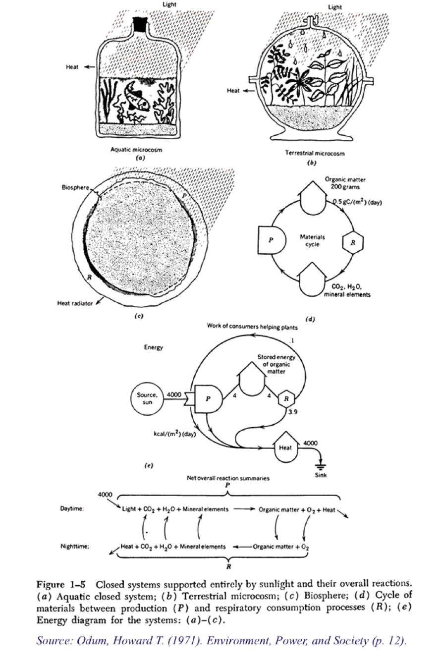 In-between political ecology and STS: A methodological