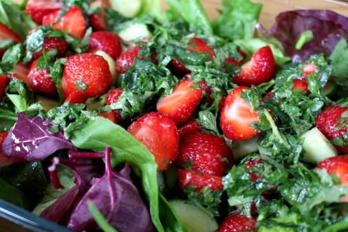 Erdbeer-Melisse-Babyspinat-Salat11