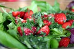 Erdbeer-Melisse-Babyspinat-Salat13