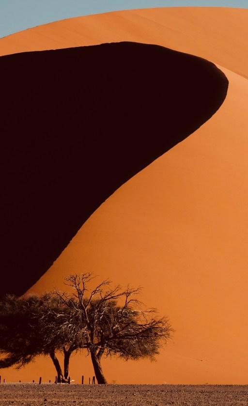 Namibie - Sossusvlei dune 45