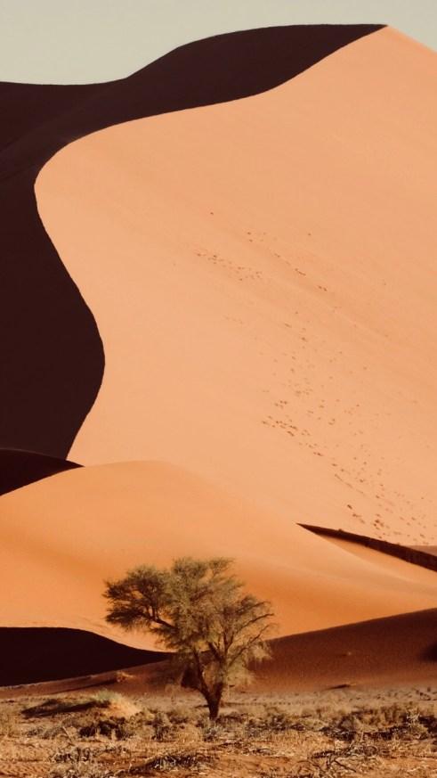 Namibie - Sossusvlei