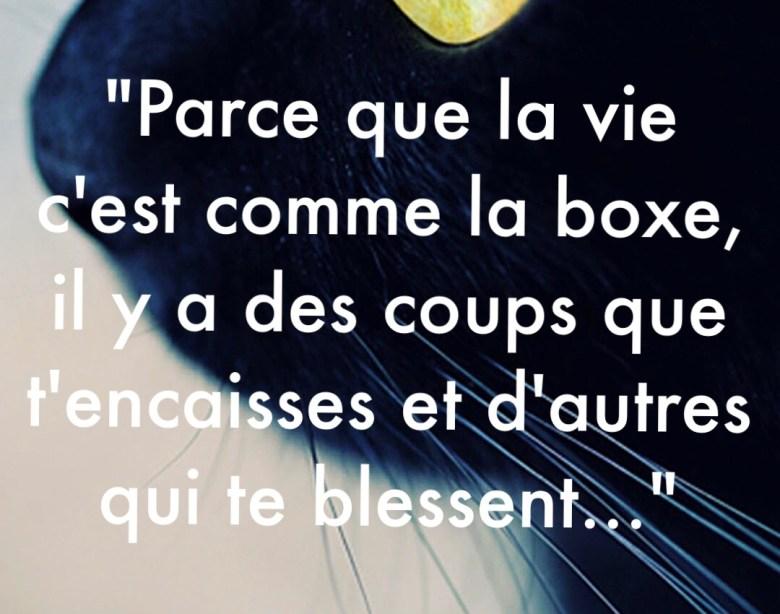 « Parce que la vie c'est comme la boxe, il y a des coups que t'encaisses et d'autres qui te blessent… »