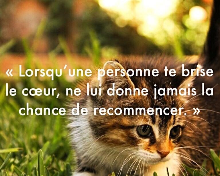 «Lorsqu'une personne te brise le cœur, ne lui donne jamais la chance de recommencer.»