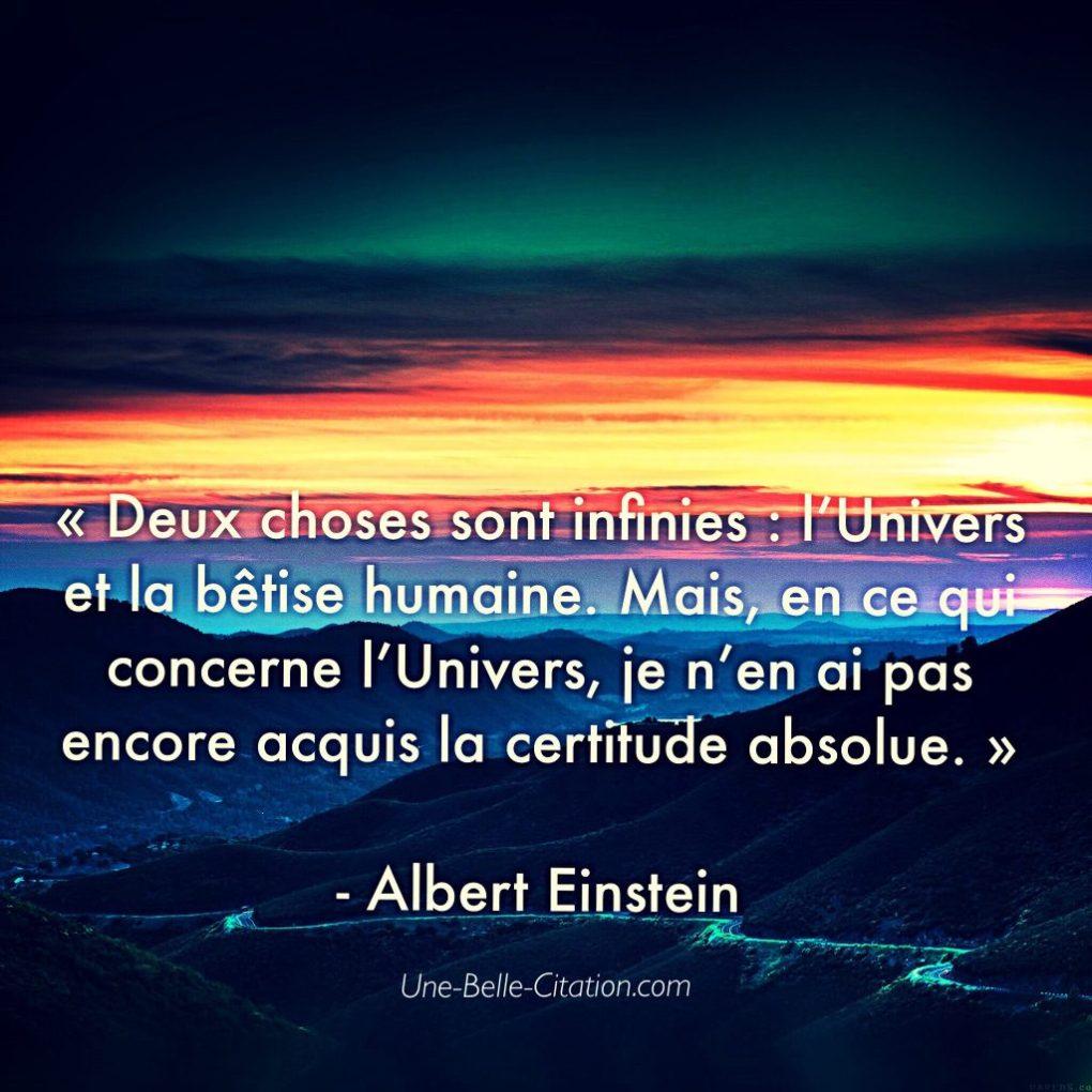 Deux choses sont infinies : l'Univers et la bêtise humaine. Mais, en ce qui concerne l'Univers, je n'en ai pas encore acquis la certitude absolue.