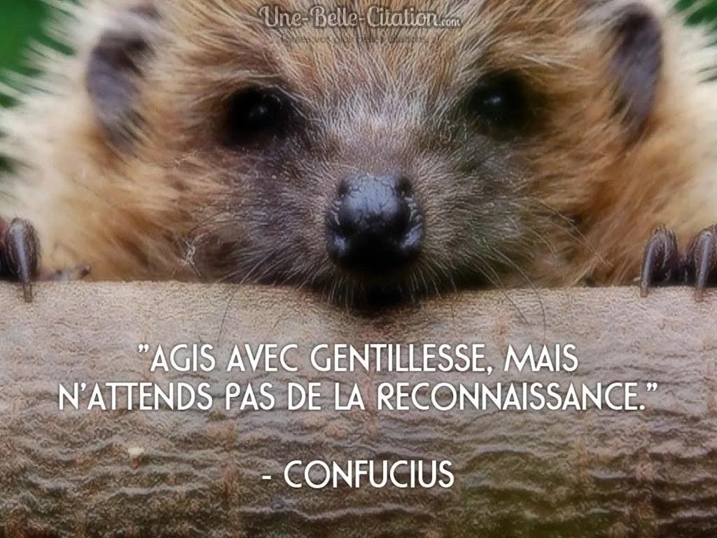 agis-avec-gentillesse-mais-nattends-pas-de-la-reconnaissance-confucius-citation