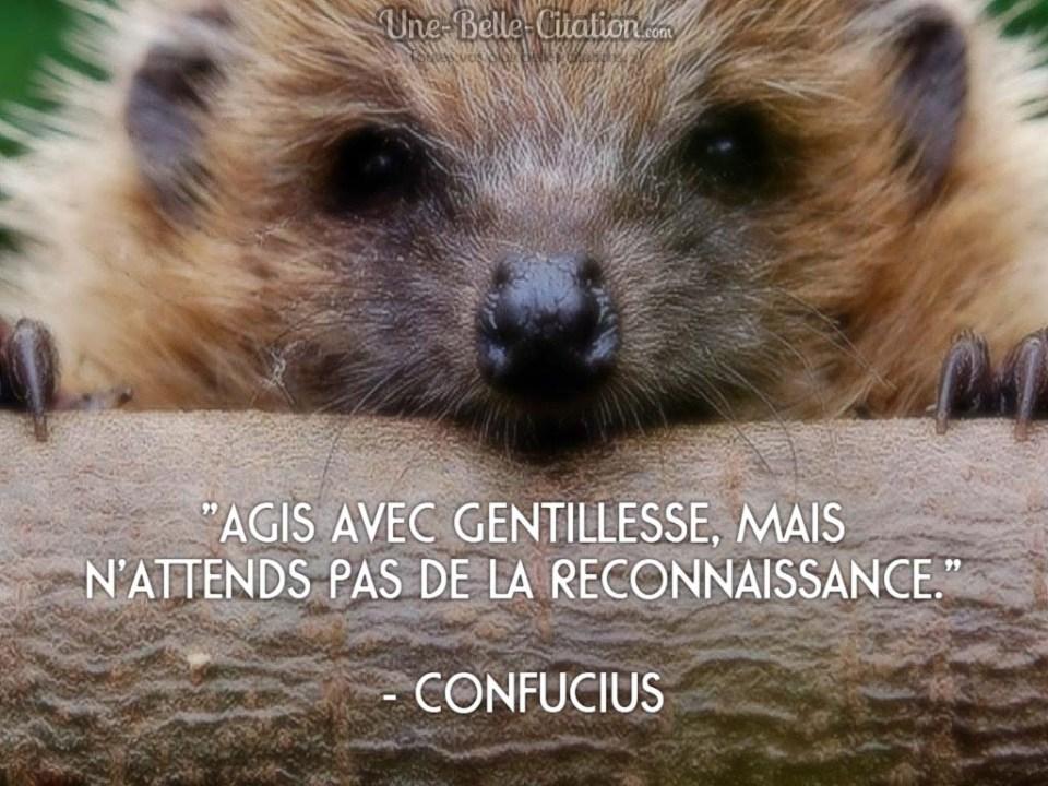 « Agis avec gentillesse, mais n'attends pas de la reconnaissance. » – Confucius