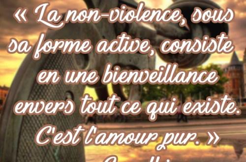 « La non-violence, sous sa forme active, consiste en une bienveillance envers tout ce qui existe. C'est l'amour pur.» - Gandhi