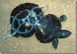 empreinte plastique