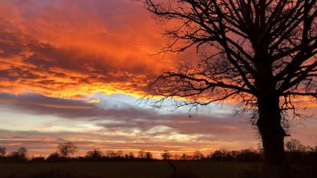 ciel chaotique et coloré d'un petit matin d'hiver