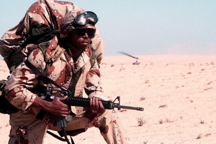 desert shield photo