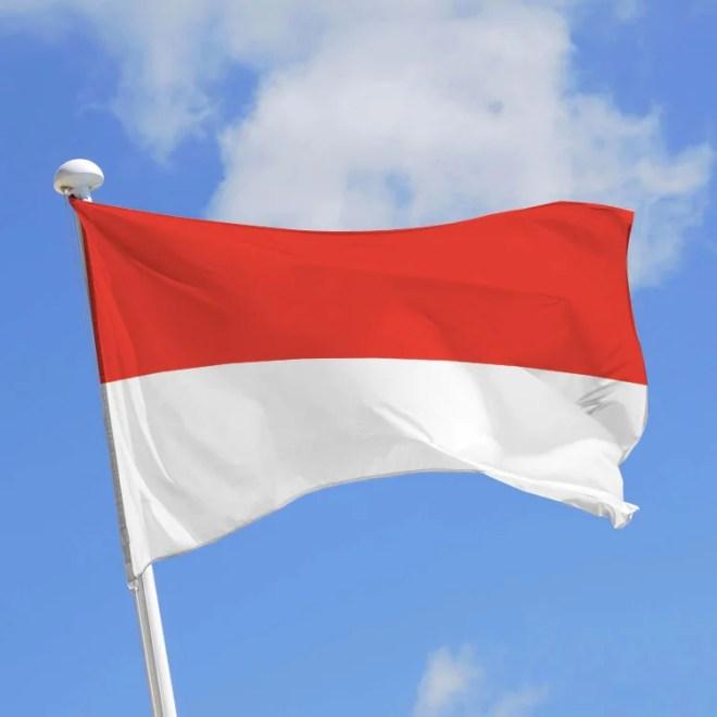Ca s'est passé un.....14 janvier By uneautreannee.com  Drapeau-indonésie