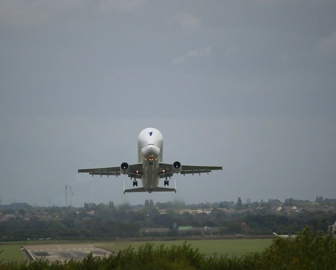beluga airbus photo