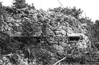Peleliu-defense-194409